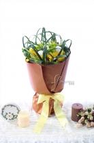 新加坡乒乓菊 + 太陽菊 + 襯葉