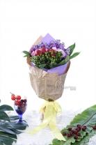 荷蘭綠豆+11枝玫瑰 + 紫羅蘭 +新鮮士多啤梨 + 襯葉